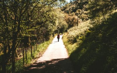Mindful Reminder – Slow Down and Just Walk