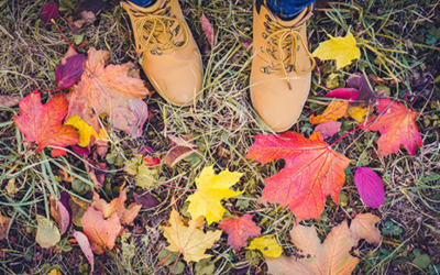 5 Great Reasons to go for a Mindful Walk in the Autumn