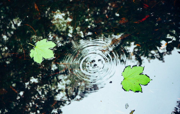 The Ripple Effect of Prioritising YOU (in a guilt-free way)